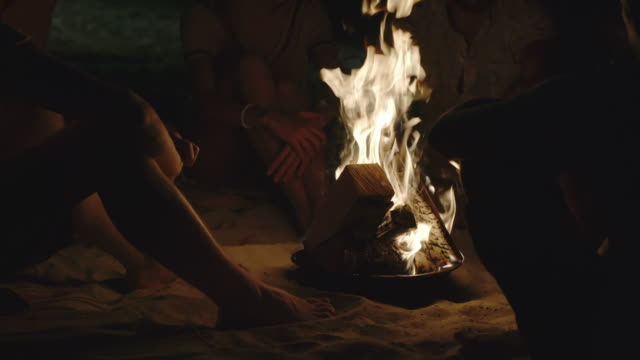 Campfire Night with Friends on the Beach - video