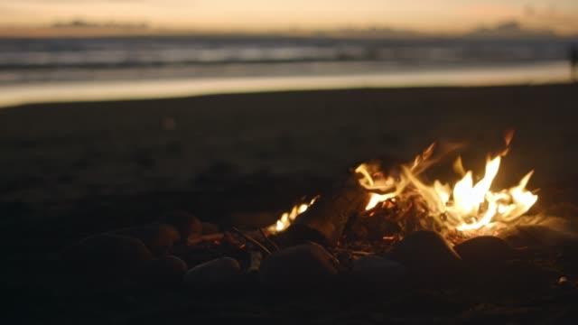 campfire on beach - falò spiaggia video stock e b–roll
