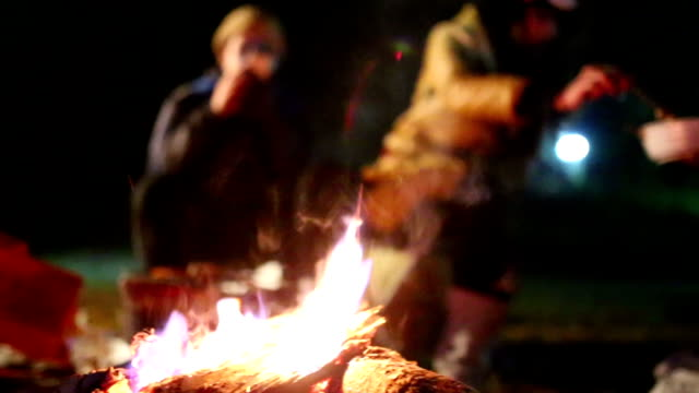 Campfire with Unrecognizable People background video
