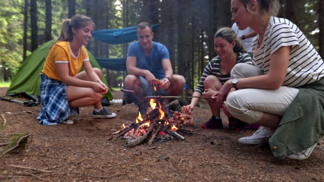 camping lunch time! - campeggio video stock e b–roll