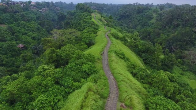 campuhan ridge walk in ubud - индонезия стоковые видео и кадры b-roll