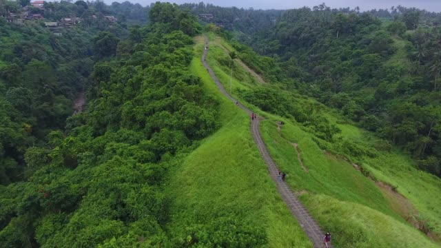 campuhan ridge promenad i ubud - bergsrygg bildbanksvideor och videomaterial från bakom kulisserna