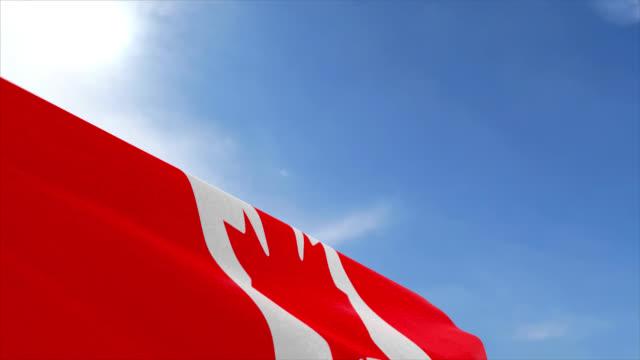 Canada fabric flag waving on the blue sky