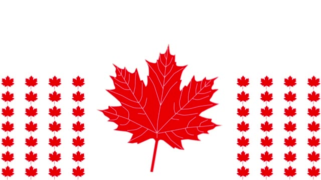canada flag looping animation (autumn style with maple leaves) - canada day stock videos & royalty-free footage