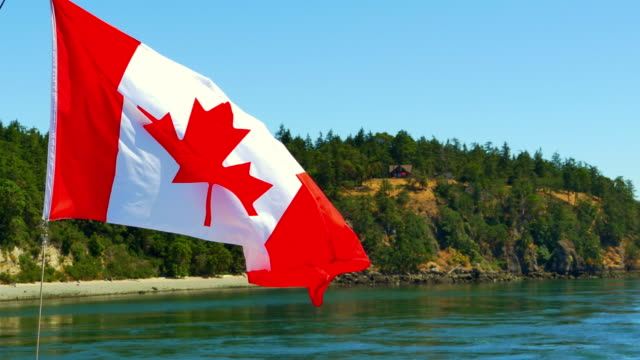 Canada Flag Red Maple Leaf National Symbol Canada Flag Red Maple Leaf National Symbol vancouver canada stock videos & royalty-free footage
