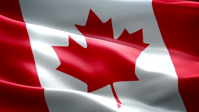 canada flag. (new surge effect) - canada flag stock videos & royalty-free footage