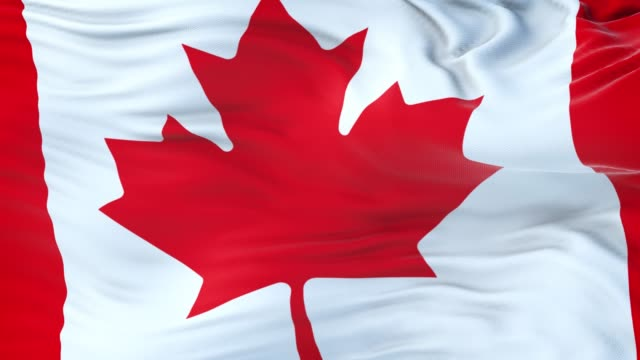 Canada flag waving in the wind with highly detailed fabric texture. Seamless loop