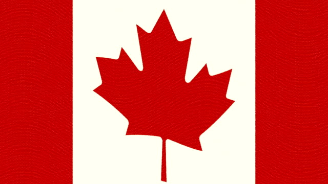 Canada flag waving seamless loop new quality unique animated dynamic motion joyful colorful cool background video footage video