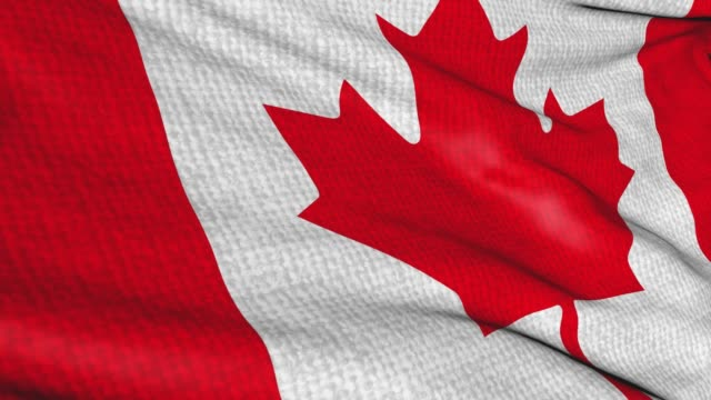 Canada flag with fabric texture, swaying in the wind. Animation of the canadian national symbol sign. Seamless video looping on isolated background.
