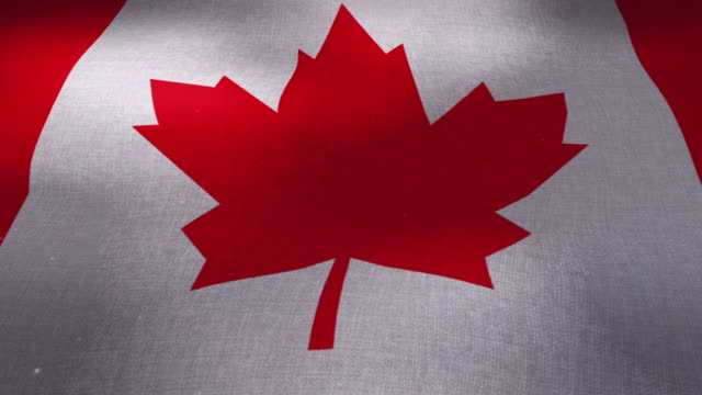canada national waving flag - low angle - canada day stock videos & royalty-free footage