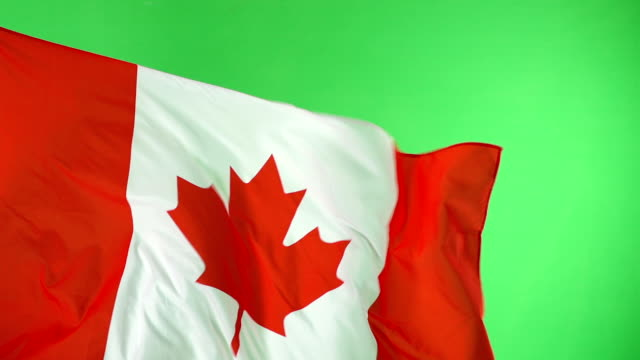 canadian canada flag on green screen,super slow motion - canada flag stock videos & royalty-free footage