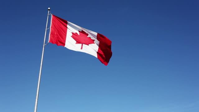 canadian flag against clear blue sky - canada flag stock videos & royalty-free footage