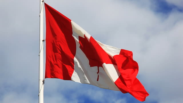 canadian flag blowing in the wind - canada flag stock videos & royalty-free footage
