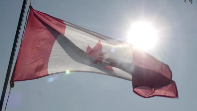 canadian flag flying in slow motion. - canada day stock videos & royalty-free footage