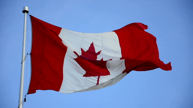 canadian flag or union jack over vivid blue sky. - canada flag stock videos & royalty-free footage
