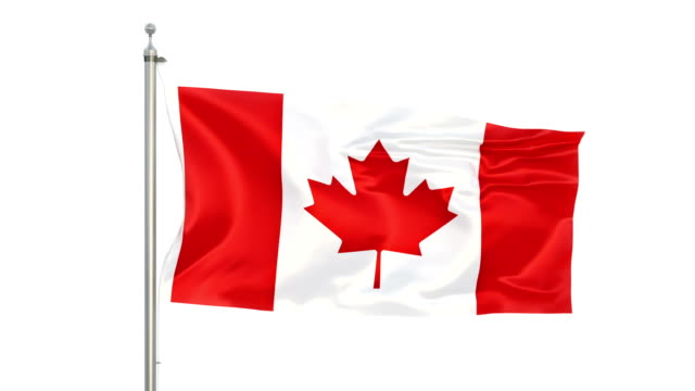canadian flag stock video in matte - canada day stock videos & royalty-free footage