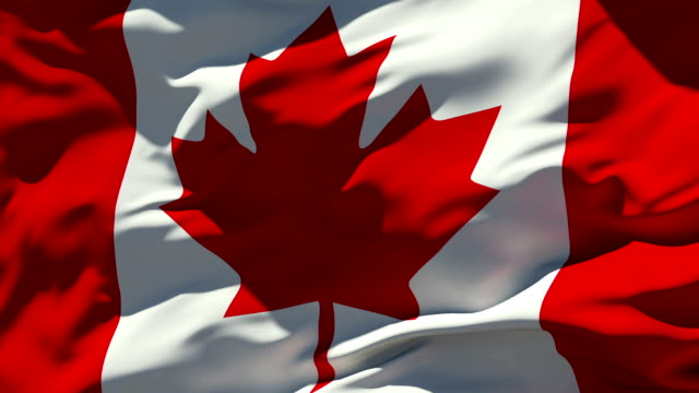 Canadian Flag Seamless Loop maple leaf videos stock videos & royalty-free footage