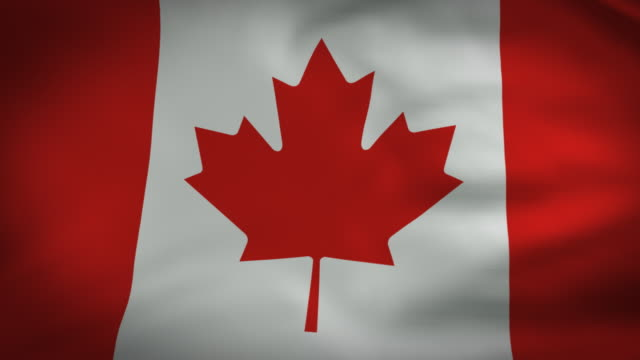 canadian flag video perfect loop - canada flag stock videos & royalty-free footage