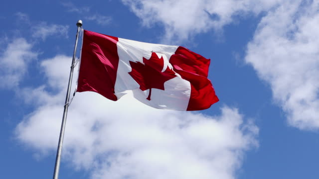 canadian flag waving against clouds background canadian flag waving against clouds background maple leaf videos stock videos & royalty-free footage
