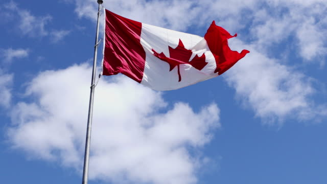 canadian flag waving against clouds background - canada flag stock videos & royalty-free footage