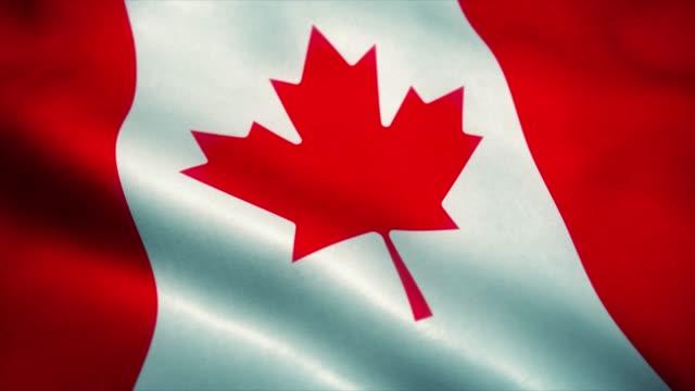 bandiera canadese che sventola nel vento. bandiera nazionale del canada. segno dell'animazione ad anello senza soluzione di continuità canadese. 4k - bandiera nazionale video stock e b–roll