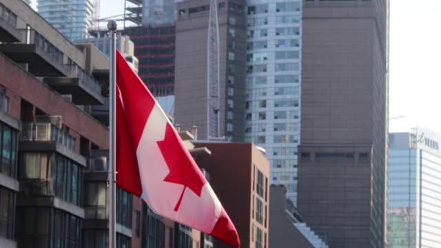 canadian flag waving in toronto - canada day stock videos & royalty-free footage