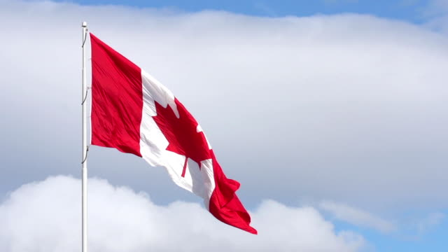canadian flag waving in wind against blue sky - canada flag stock videos & royalty-free footage