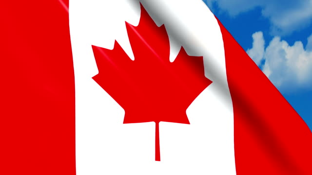 Canadian flag waving on wind video