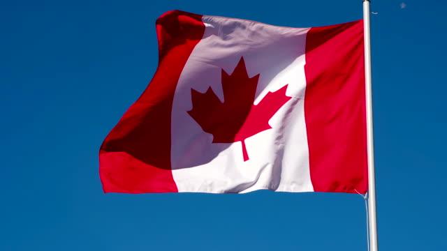 canadian flag wiggles the wind - insygnia filmów i materiałów b-roll