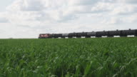 istock Canadian Pacific Railway long freight passing 1271494219