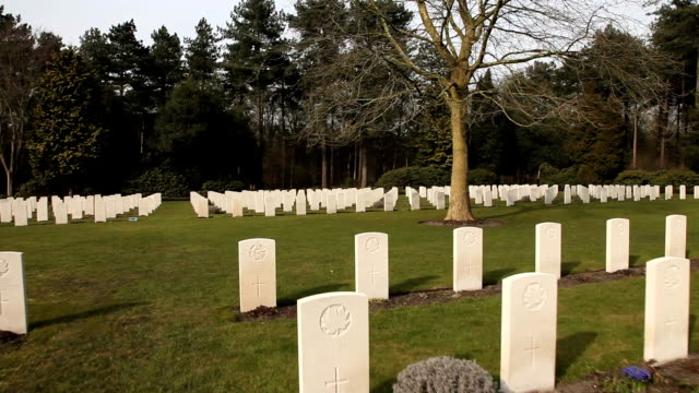 Canadian War Cemetery-tree and gravestones video