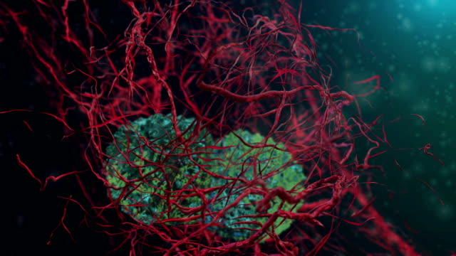 Cancer cells video