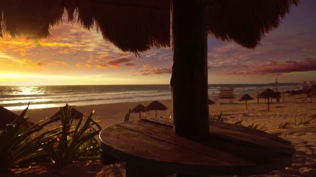 cancun delfines strand an der karibik riviera maya - sonnenschirm stock-videos und b-roll-filmmaterial