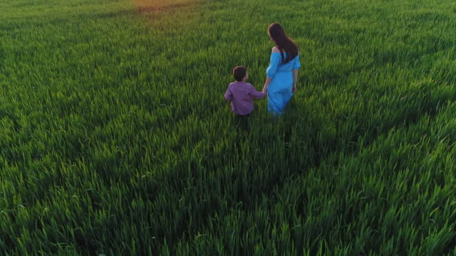 Candid mother kissing son while walking on green field video