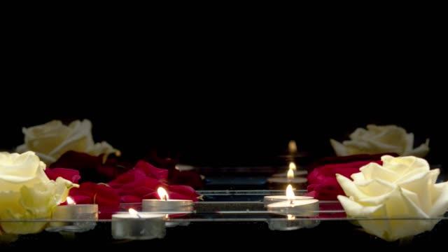 ljus och rosor simmar på vattnet - white roses bildbanksvideor och videomaterial från bakom kulisserna