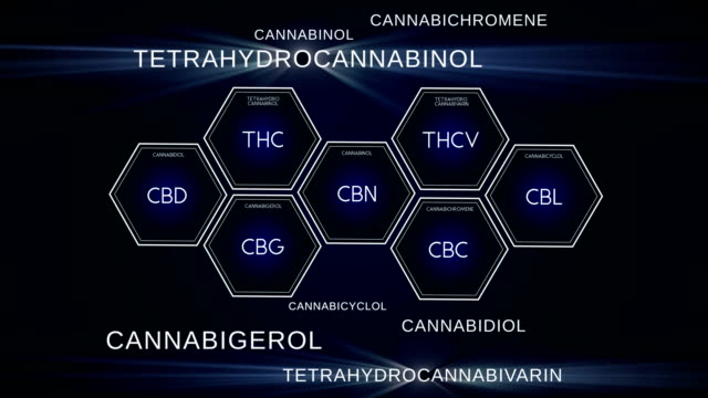 Cannabinoid Science. Different compounds of marijuana Endocannabinoids , Phyto Cannabinoids, Synthetic cannabinoids. Scientific research of activity on CB receptors in the brain, immune and nervouz system, etc. cannabidiol stock videos & royalty-free footage
