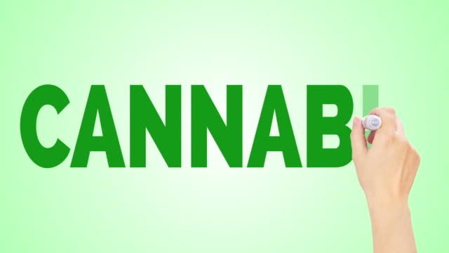 Cannabis Cannabis animated words. Kinetic typography. flowering plant stock videos & royalty-free footage