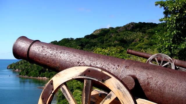 Cannon 05
