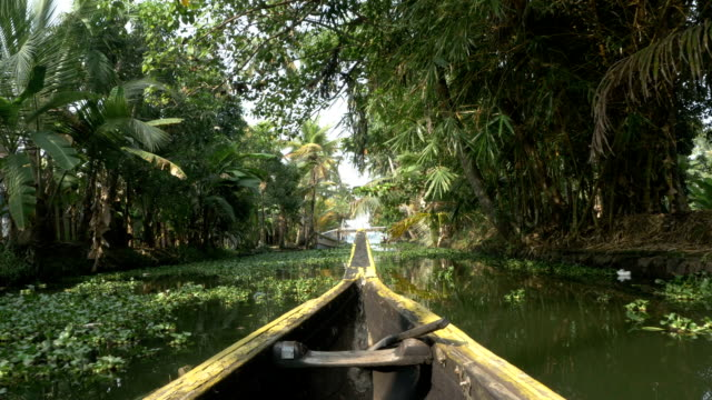 canoe boat on backwaters of Kerala State, South India The Kerala backwaters are a chain of brackish lagoons in southern India south stock videos & royalty-free footage