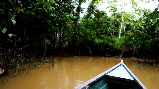 kanufahrt durch die überfluteten dschungel auf dem weg zum abgelegenen einheimische gemeinden - stamm stock-videos und b-roll-filmmaterial