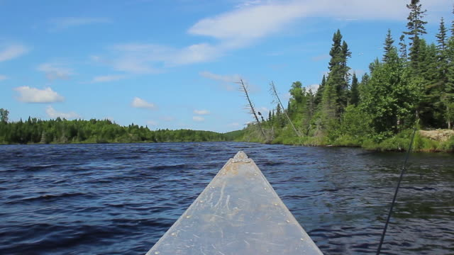a canoe pov video clip in the boundary waters during summer - дикая местность стоковые видео и кадры b-roll