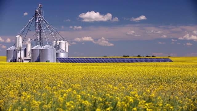 vídeos y material grabado en eventos de stock de panel de solar de silo de grano de canola - canadá