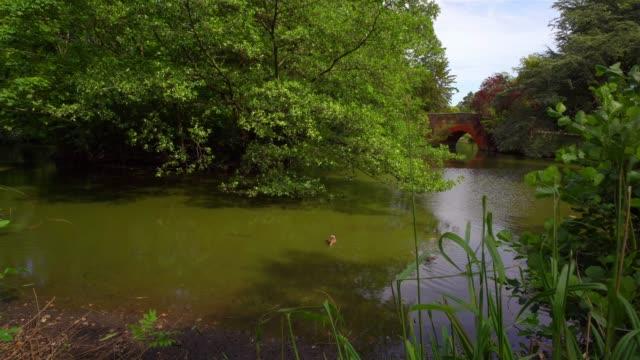 Canon Hill Park, Birmingham. - vídeo