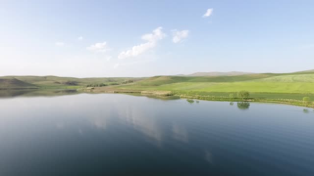 baldachin von grünen bäumen auf zerklüfteten schwarzmeergesicht mit meer im hintergrund, 4k drohne video - zentralanatolien stock-videos und b-roll-filmmaterial