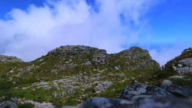 cape town Mountain South Africa table mountain national park stock videos & royalty-free footage