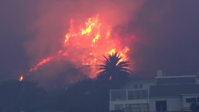 cape town-march,2015: fierce bush fires on the slopes of table mountain,south africa - skog brand bildbanksvideor och videomaterial från bakom kulisserna