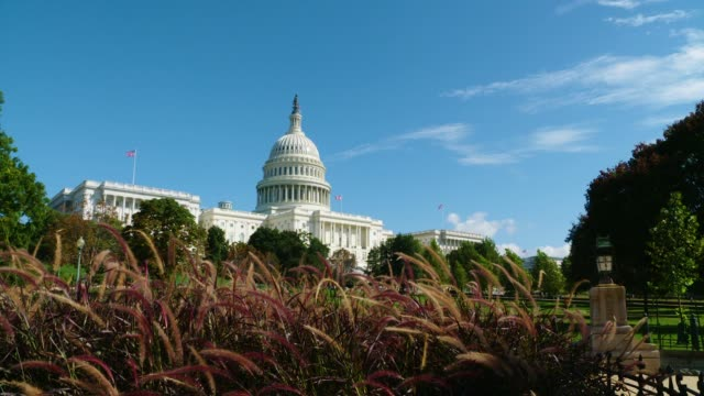 US Capitol Building with Red Grasses and Blue Sky with High Clouds 20180928