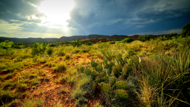 stockvideo's en b-roll-footage met caprock canyon state park - texas