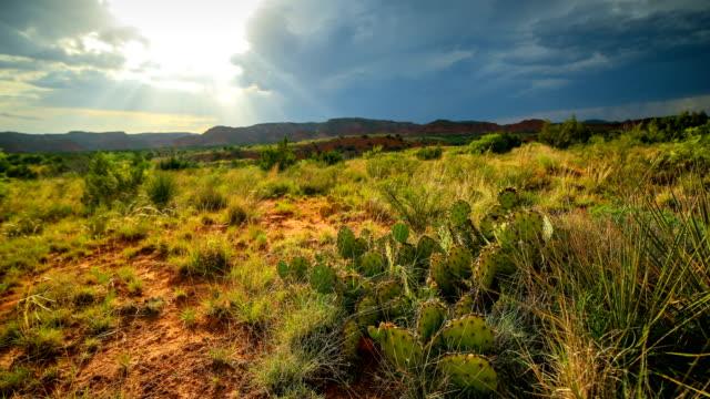 caprock canyon state park - запад стоковые видео и кадры b-roll