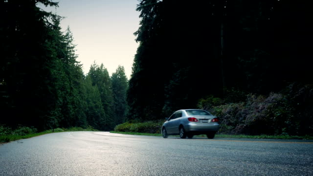 car and pickup pass on forest road - passare davanti video stock e b–roll